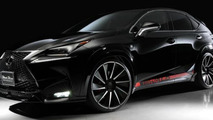 Wald International introduces their styling program for the Lexus NX