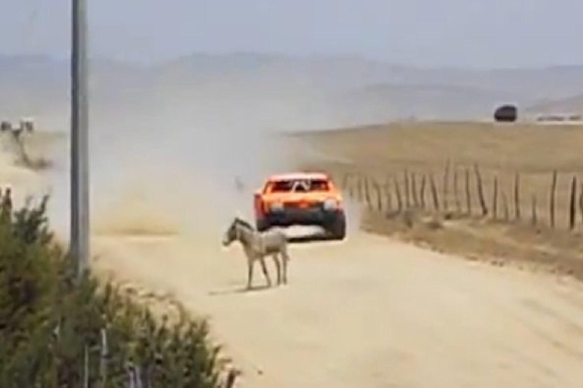 Watch Robby Gordon Nearly Hit a Donkey [video]