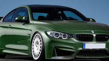 Alpha-N Performance BMW M3 & M4