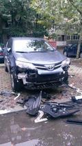 Starving dogs mutilate Toyota RAV4