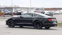 2019 Ford Mustang Bullitt casus fotoğraf
