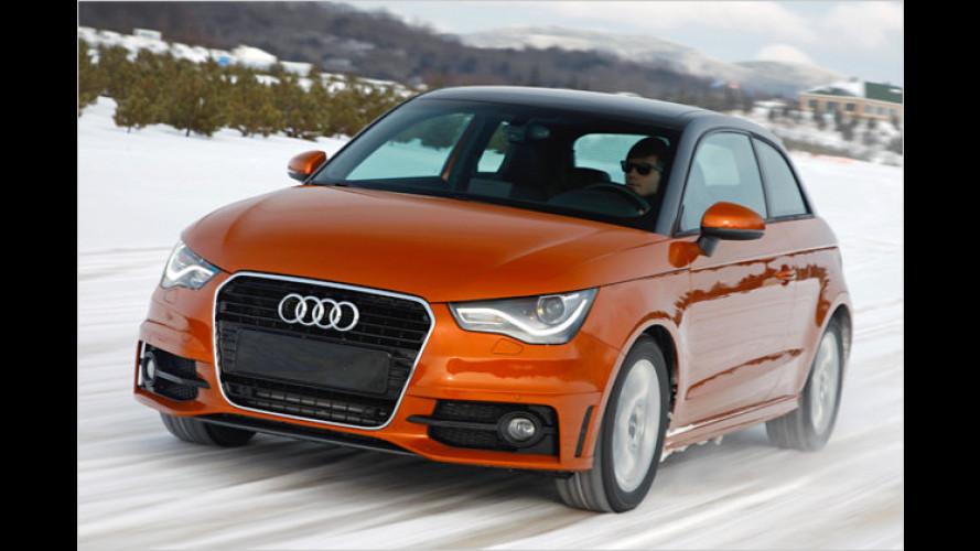 Audi S1 quattro: Kommt der Kraftzwerg noch 2012?