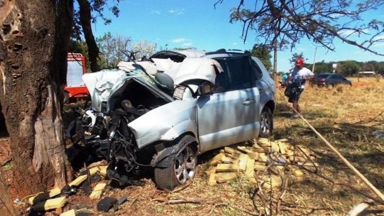 Trafficker killed by half a ton of drugs after colliding with a tree 07.10.2013