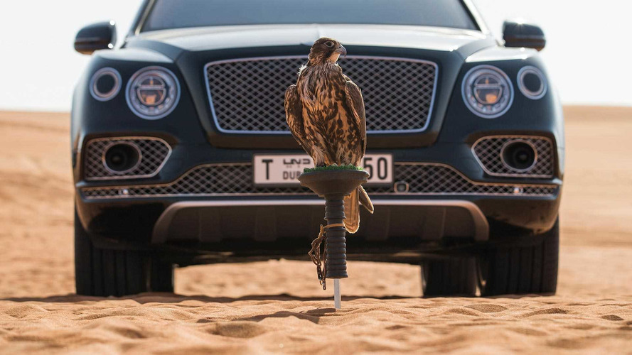 Bentley Bentayga Takes Flight With Bizarre Falconry One-Off