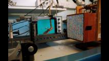 Volvo studia le locuste per migliorare la sicurezza