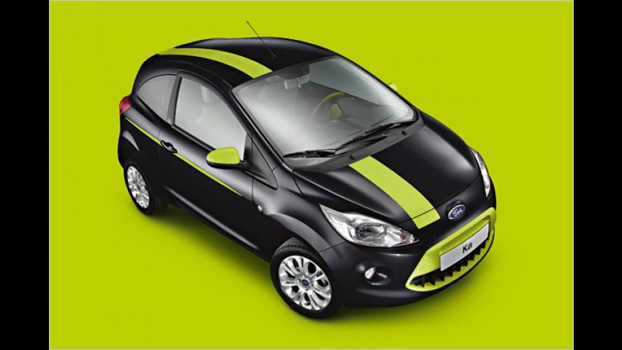 Ich bin ich: Ford erweitert Individual-Programm