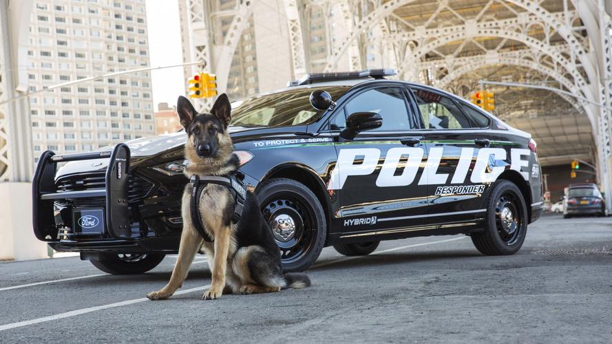 VIDÉO - Toutes les Ford de police depuis 1950 !