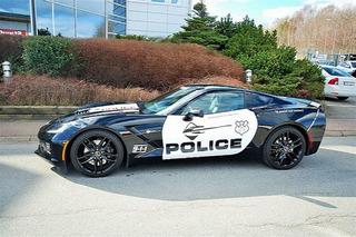 Swedish Corvette Stingray Police Car Needs a New Home