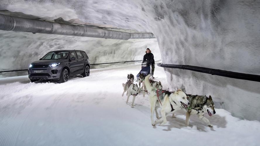 VIDÉO - Un Land Rover Discovery Sport contre des chiens de traîneau