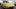 VIDÉO - Cinq modèles mémorables signés Porsche Exclusive