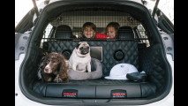 Nissan Concept X-Trail 4Dogs
