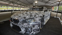 BMW M6 GT3 race car