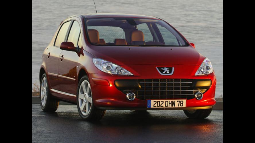 Nuova Peugeot 307