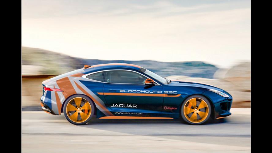 Rekordjagd mit Jaguar