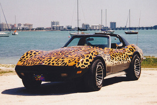 Forget the Stingray, This Corvette is a Jaguar!