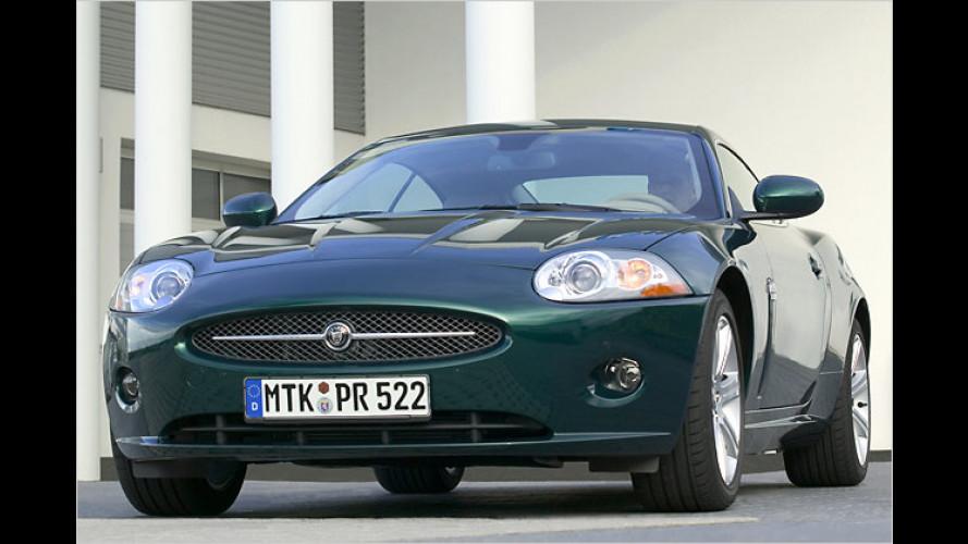 Besonders günstiges Sondermodell des Jaguar XK Coupé