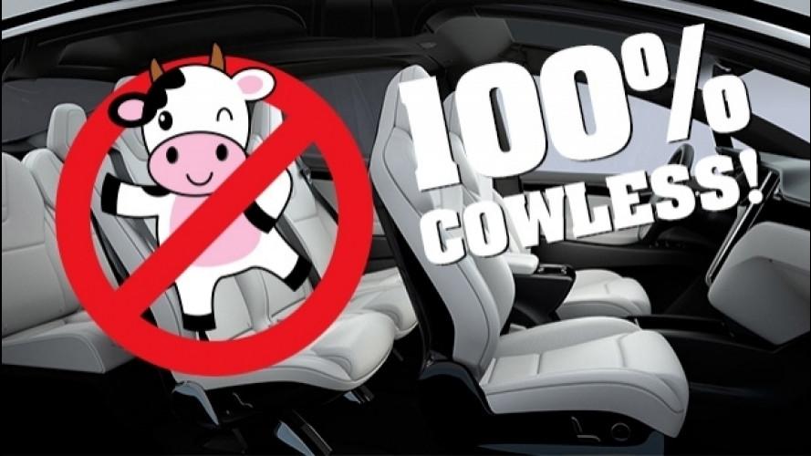 Sono in arrivo le auto per vegani