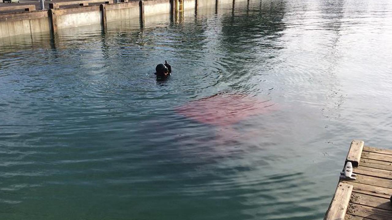 Submerged Toyota Yaris