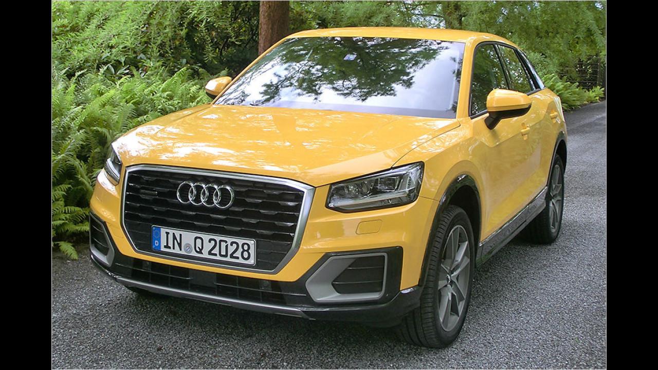 Kleine SUVs: Audi Q2