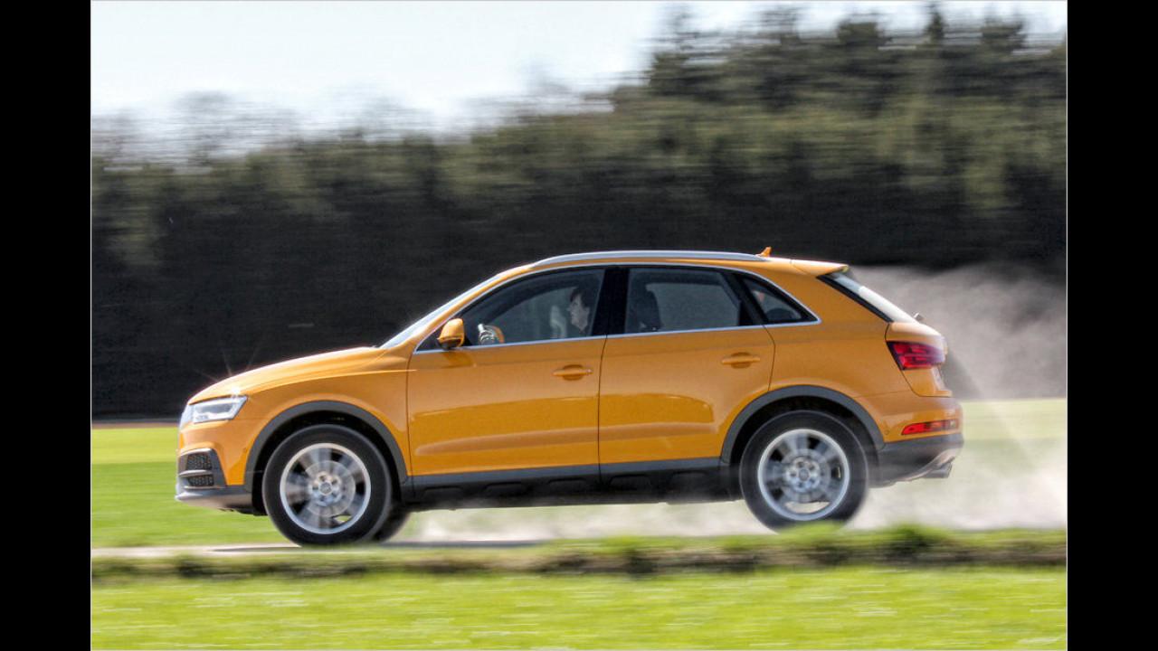 Audi Q3: 22.595 Neuzulassungen
