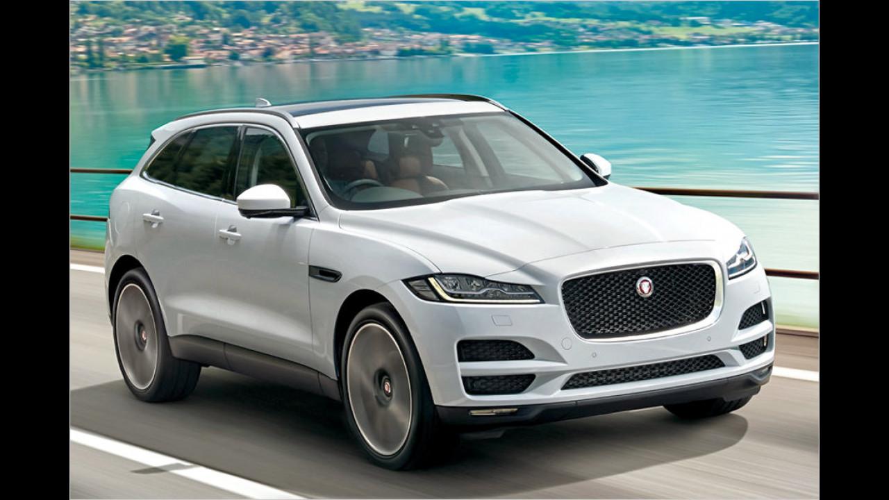 Jaguar: 76 Prozent