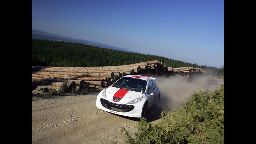 Trofeo Rally Terra: Burcu Cetinkaya all'assalto del Rally d'Azzano