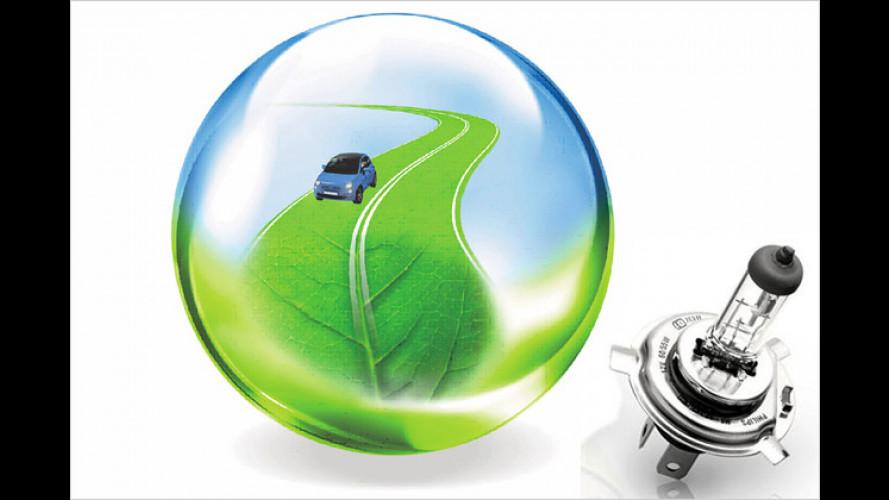 Die umweltfreundliche Halogenlampe für Fahrzeuge