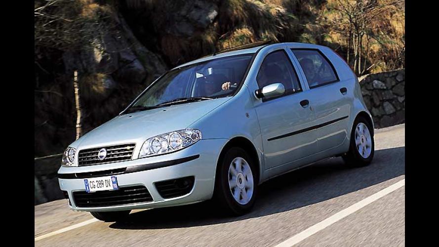 Fiat: Trofeo-Sondermodelle mit bis zu 3.000 Euro Preisvorteil
