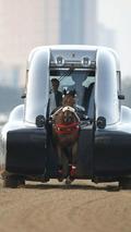 Kurt equine trainer