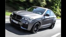 Muskeln für den BMW X4
