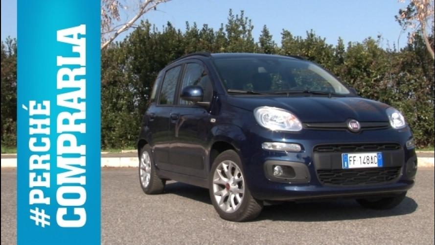 Fiat Panda, perché comprarla... e perché no [VIDEO]