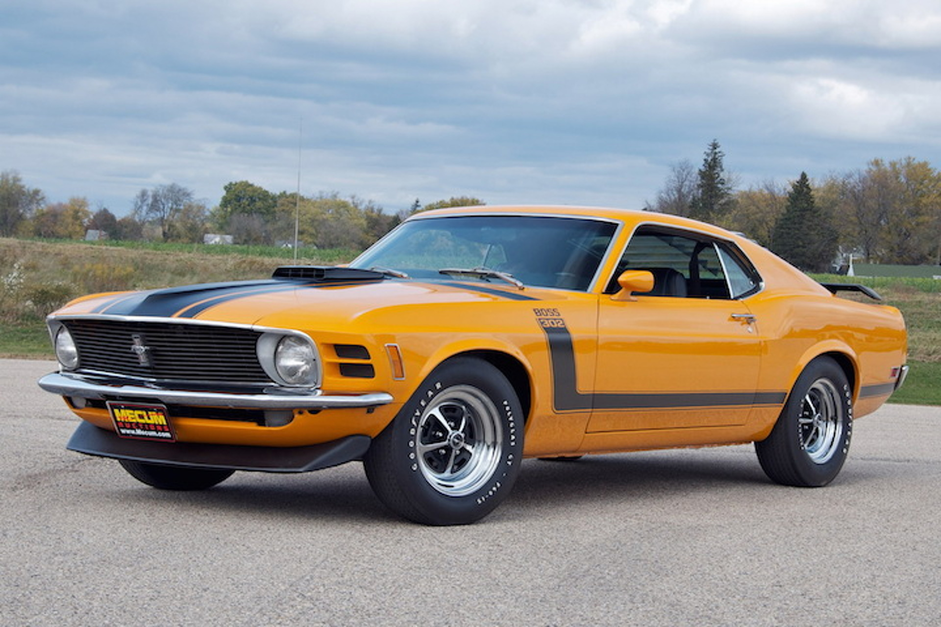 8 great ford mustang boss 302 colors. Black Bedroom Furniture Sets. Home Design Ideas
