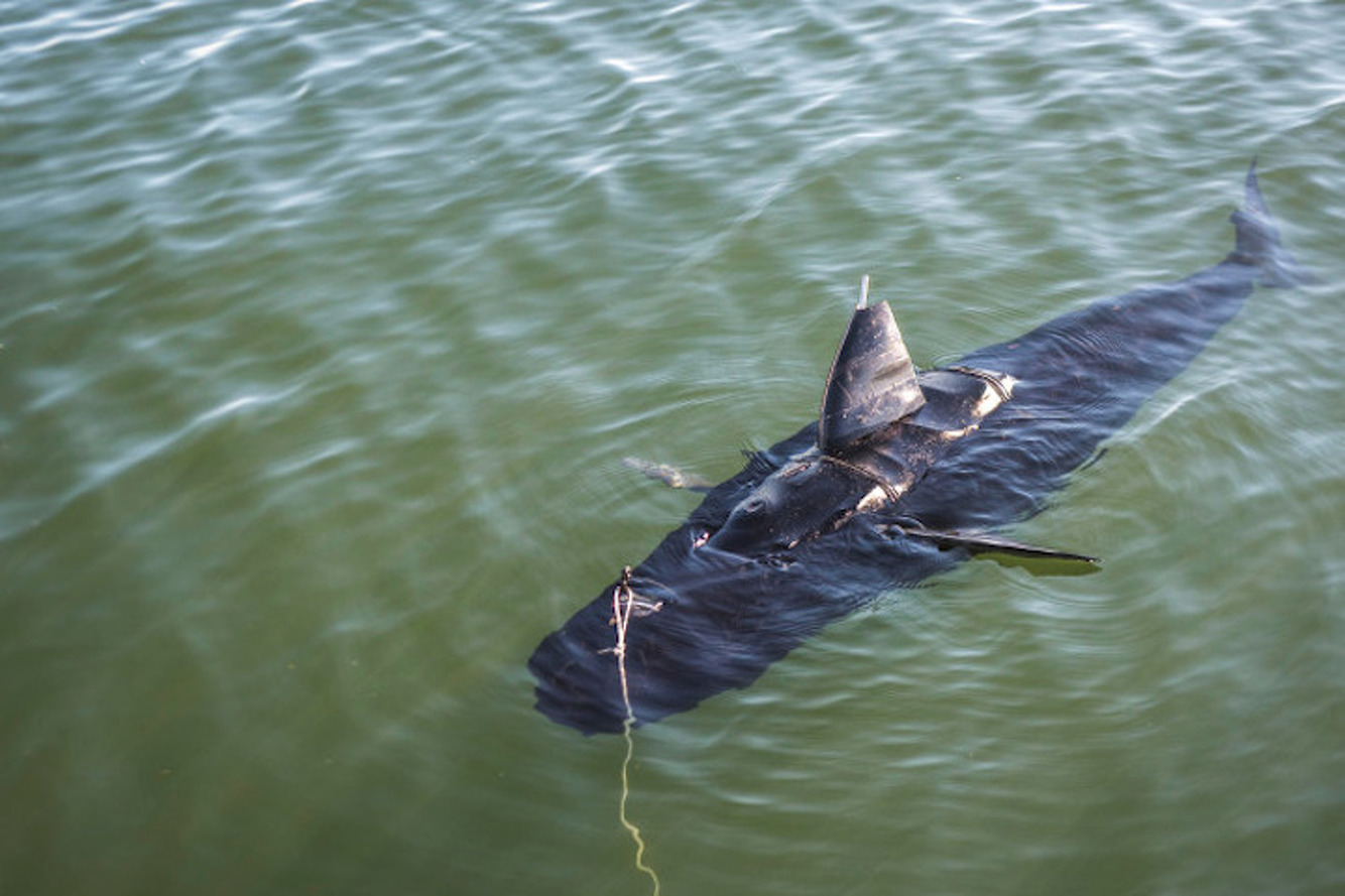 This Navy Surveillance Robot Looks Exactly Like a Shark