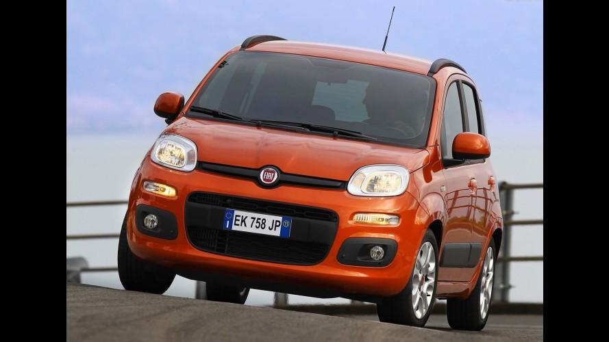 Fiat pode estar trabalhando em um crossover compacto baseado no Panda