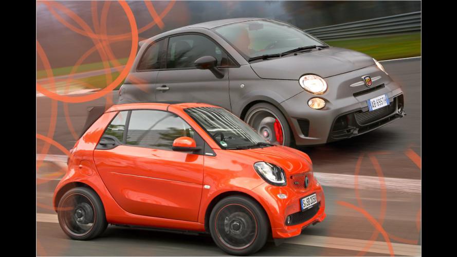 Die kleinsten Autos für die meisten Euros