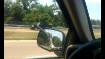 VÍDEO: Cobra surge em capô de carro em movimento