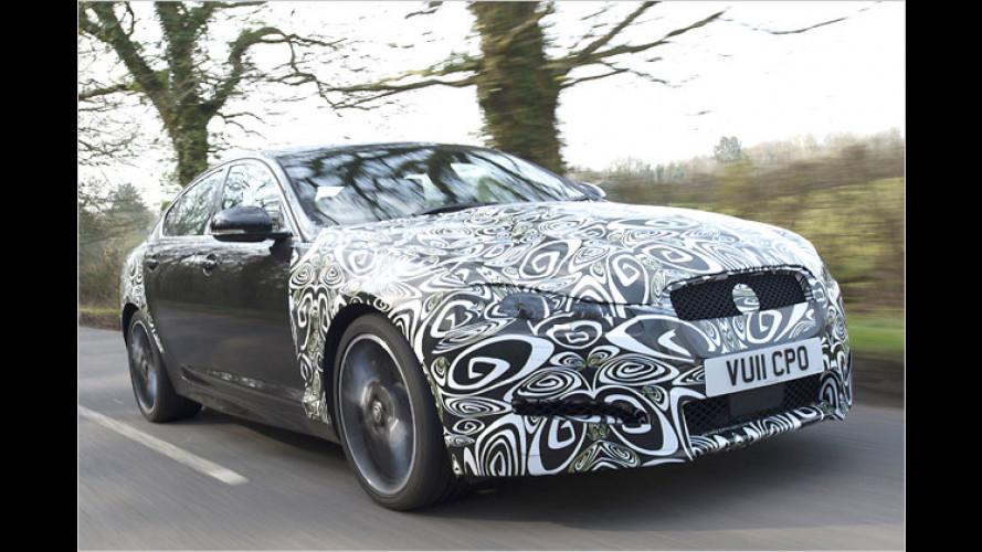 Jaguar XF: Facelift und neuer Diesel
